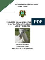 Proyecto de Cabras Final NATIVIDAD