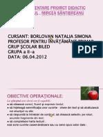 Borlovan Natalia Simona SeriaII GrupaII Proiect Didactic- Marul de Mircea Santimbreanu