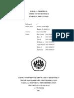 Laporan Praktikum Jembatan Whestone (1)