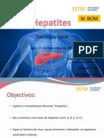 Hepatites (1)