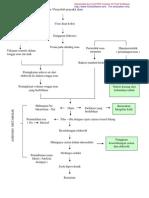 patofisilogi-diare
