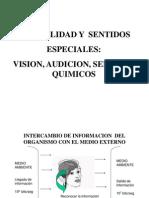 Clase Teorica No 6. Sensibilidad y Sentidos. Prof. a.calvino
