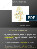 Aula 4 Neurotransmissores_Rejane Santana