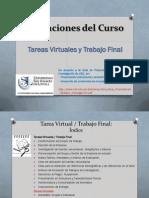 Indicaciones Del Curso Tareas Virtuales y Trabajo Final Revisado 4 PLANESTRA