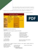Adjetivos e Subst Plural