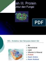 Kuliah III- Protein 2010