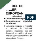 Mediul de Faceri European
