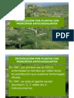 4plantas Con Principios Anticoagulantes Alumnos