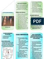 Leaflet Kaki Gajah