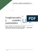 Conglomerados y Ciudades Sustentables