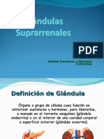 glandula suprarrenales