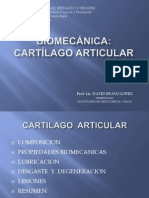 Clase III - Cartilago