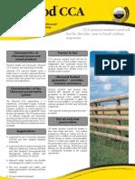 CCA Brochure 040806