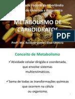 Metabolismo de Carboidratos - Rosiane Gomes Silva Oliveira