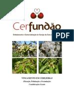Cerfundao - 13
