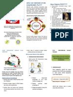 DSS Leaflet