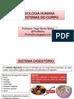 Anatomia e Fisiologia - Prof Mafra