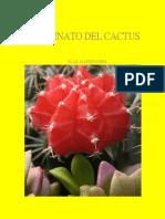 El Asesinato Del Cactus