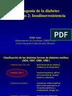319_ir Mendoza 2010 Dr Pablo Arias