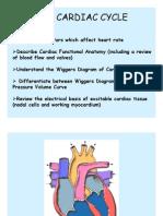 Cardiac Cycle 0