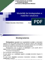 Modalităţi de biodegradare a materiilor celulozice