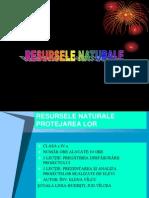 Resursele Naturale-prezentare Proiect