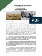 """""""Racionamiento con Silo de Maiz como Forraje Mayoritario"""""""