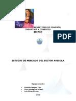 Resumen Ejecutivo Avicola. Doc(1)