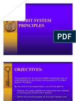 Nine Merit Principles