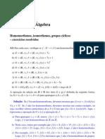 Introd Algebra - Exercicios Resolvidos 3 - Lenimar N Andrade