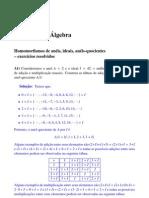 Introd Algebra - Exercicios Resolvidos 6 - Lenimar N Andrade