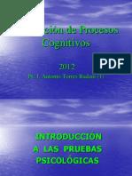 Introducción a las pruebas psicológicas (1)