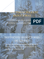 Bacterias Sulfato Reductoras (1)