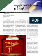 cultura in vitro.pdf