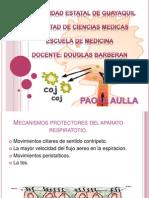 Expo Grupo 7.- Fisiopatologia Paola Aulla