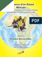 Résilience d'un Géant Africain Volume II