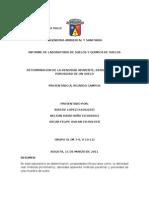 Informe de Laboratorio de Suelos - Determinacion de Densidad Relativa, Densidad Real y Porosidad de Un Suelo