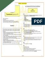 España-CONSTITUCIONcaosasuna