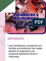 EXP de Mordeduras y Picaduras