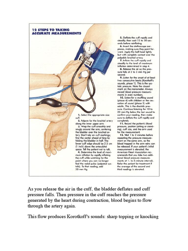 12 Step to Accurately Measuring Blood Pressure | Blood Pressure | Blood  Vessel