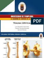 Trauma Cervical UCI