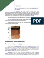 Struktur Dan Komposisi Udara Tanah