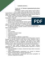 Raport Structura Organizational Prin Prisma Comportamentului Organizatoric
