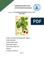 Mora Biotec (1)
