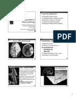 Essentials of Neuroradiology RSNA 2007
