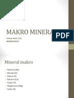 Makro Mineral