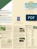 Jardin Pluvial