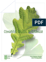 Conseptos Basicos de Botanica