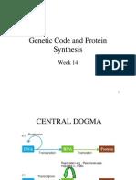 Week 14-Genetic Code and Protein Syntesis