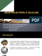 Papel e Celulose_final